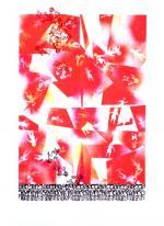 Proiezioni--1997,-Serigrafia-101-x-72